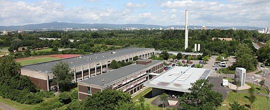 Sportwissenschaften Uni Frankfurt